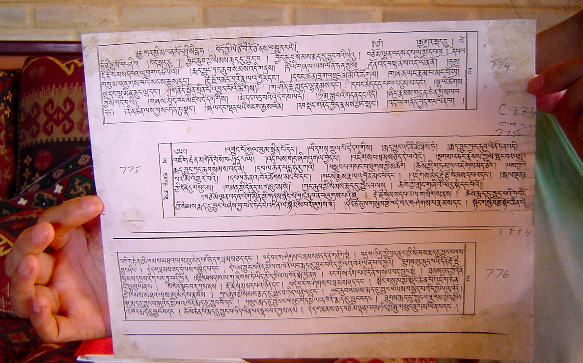 One page of the Tibetan text of the Mejung-Tantra
